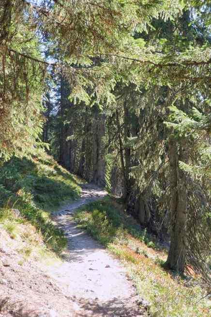 Wanderweg zur Kellerjochhütte