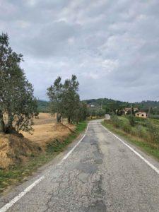 Kleine Straße von Artimino nach Montelupo di Fiorentino